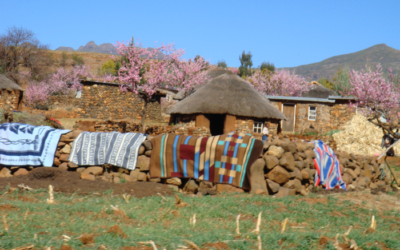SEEKING PROPOSALS: Evaluation of Statistical Capacity and Data Use in Lesotho